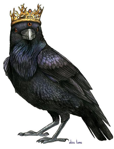 Three Eyed Raven in a Game of Thrones Crown A4 by birdsinhats                                                                                                                                                                                 Mais