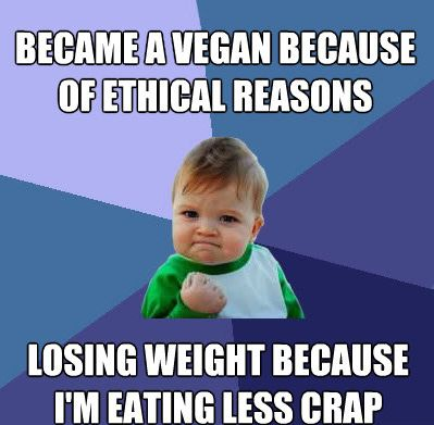 12 of Our Favorite Vegan and Animal Rights Memes | Ecorazzi