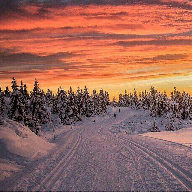 mittnorgeNordseter, Lillehammer 🌅 📷: @annemeide