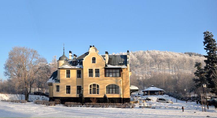 Villa Elise, Stronie Śląskie (33 miejsc noclegowych)