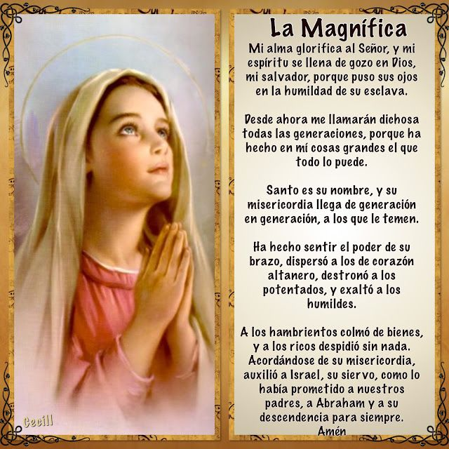 Fuente:http://imagenescecill.blogspot.com.es