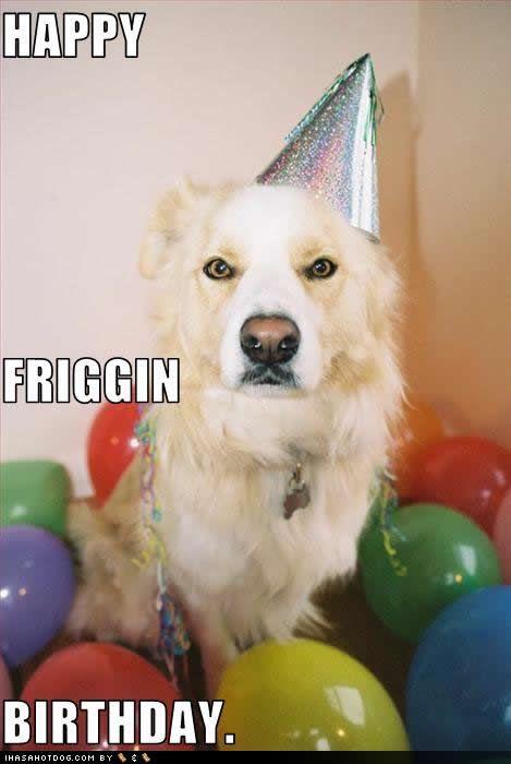 happy friggin birthday
