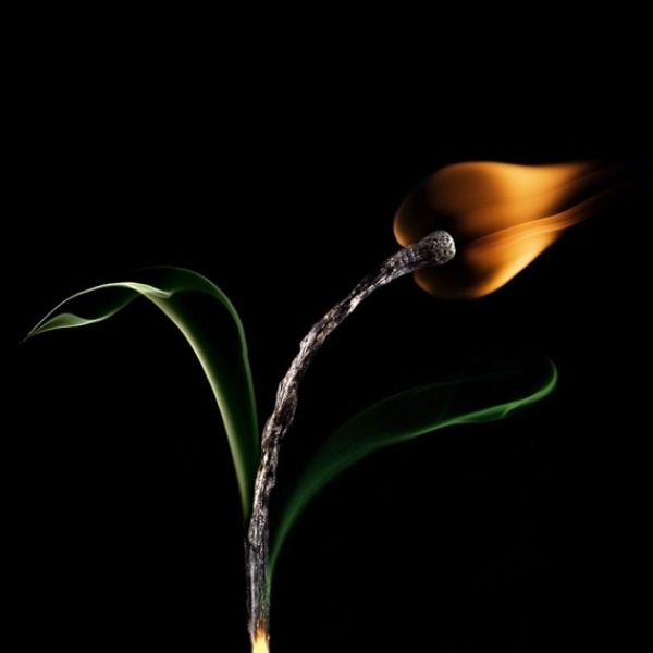 Stunning photography of MATCHES by Stanislav Aristov.. Brilliantly executed!