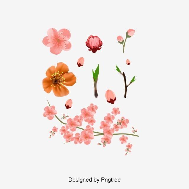 Il Vettore Di Rosa Fiori Di Pesco Rosa Fiore Di Pesco Fiore Immagine Png E Clipart Per Il Download Gratuito Fiori Di Pesco Fiori Ad Acquerelli Sfondo Rosa