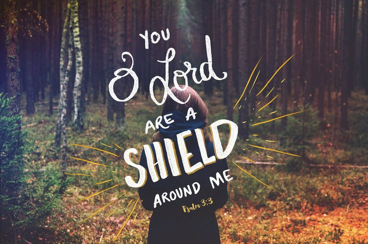 But you, O LORD, are a shield about me,my glory, and the lifter of my head.(Psalm 3:3 ESV)