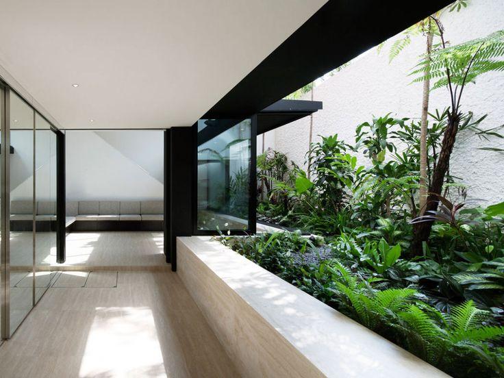 Architecture Design, Interior Garden Design With Armadillo House 06:  Sensational Armadillo House By Formwerkz