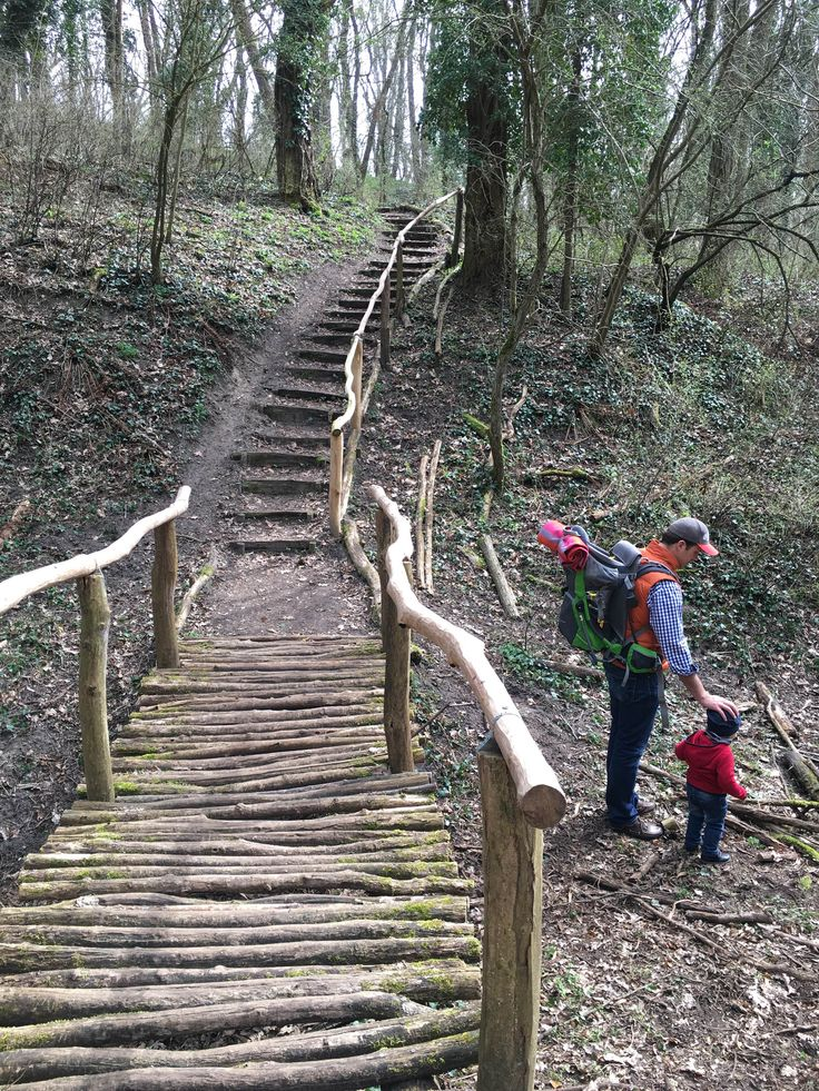 Auf Entdeckungsreise im Naturschutzgebiet und besonders verwunschenen Pfaden - Glindower Alpen in Brandenburg: Entspanntes Wandern mit Kindern | Pinspiration