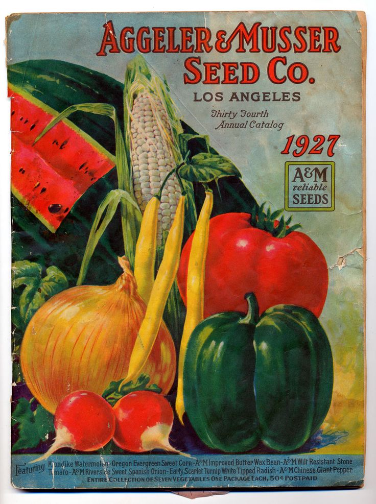 walton seed company Welcome to the breakers of fort walton beach, fl imagine white sands, turquoise waves, and stunning tropical sunsets, all from your gulf-front balcony click to book.