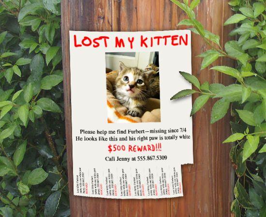 wikiHow to Make a Flyer -- via wikiHow.com