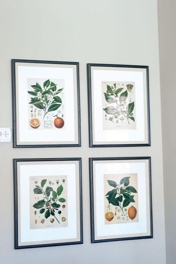 diy fixer upper botanical prints. free botanical prints, Joanna gains art. Joanna gaines botanical prints for free, free printable botanical prints, farmhouse art, fixer upper knockoff, gallery wall art