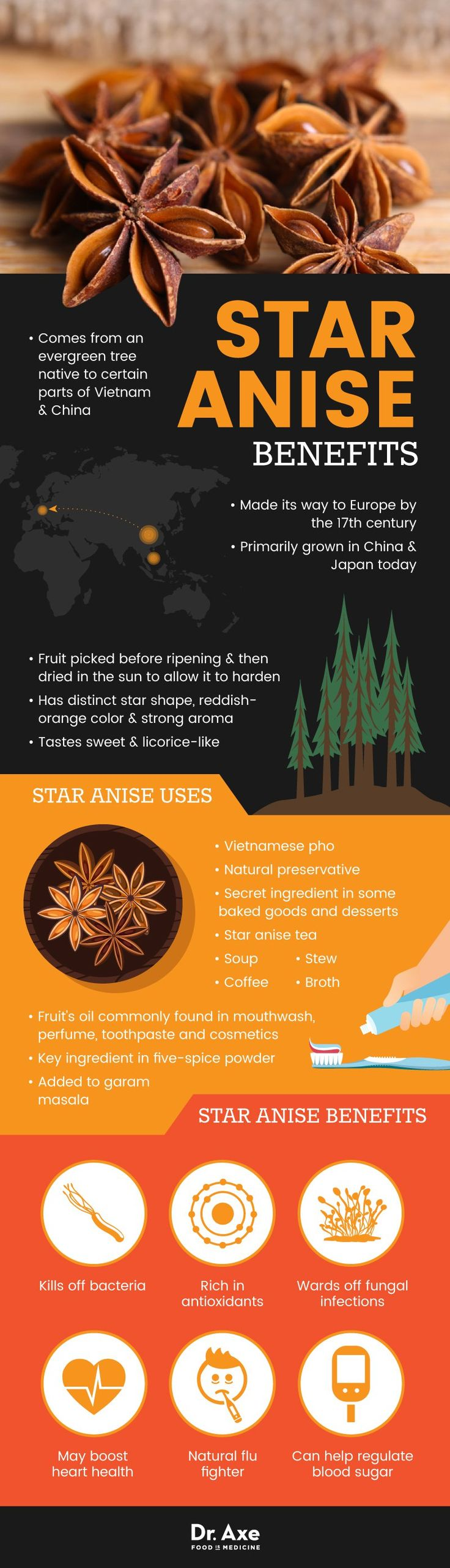 Star anise benefits - Dr. Axe