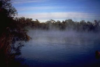 Witjira-Dalhousie Springs, SA (south australia)|