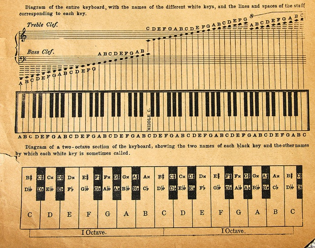Piano - Treble Clef & Bass Clef - More Info by Driven to Capture 2, via Flickr