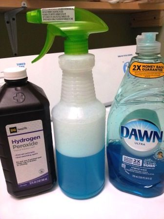 Bottle of Dawn, Hydrogen Peroxide and a white spray bottle with a green sprayer is our  DIY carpet cleaner solution.