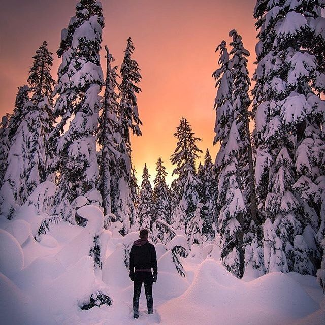 Most of Canada is covered in a thick blanket of white today. What does it look like where you are? : @ppodski of @scottiem2001 at Mount Seymour Provincial Park, BC.  .  .  .  .  .  #flightielife #openmyworld #travel #instatravel #travelgram #explore #exploremore #adventure #wanderlust #lifewelltravelled #bucketlist #neverstopexploring #wander #vacation #escape #travelmore #getoutside #nature #ilovetotravel #travelcanada #explorebc #Canada150 #travelgram