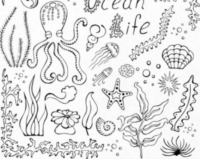Doodle Marine Life Clipart Sea Life Clip Art Ocean Life Png Eps Fish Vector Under The Sea For Personal And Commercial Use Ocean Drawing Under The Sea Drawings Sea Creatures Drawing
