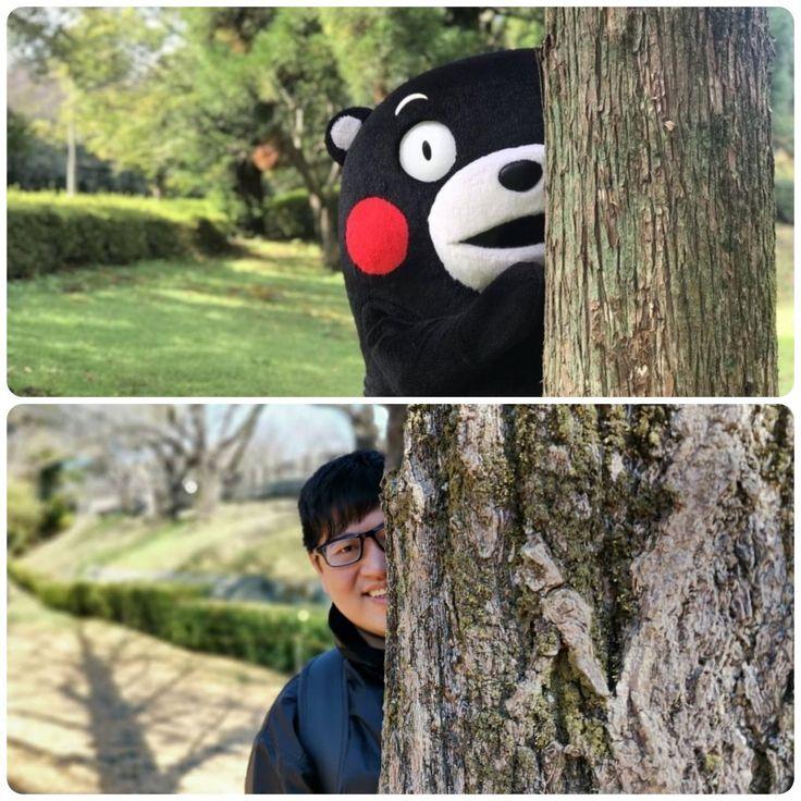 Japan kumamoto moscots kumamon kuma bear in japanese