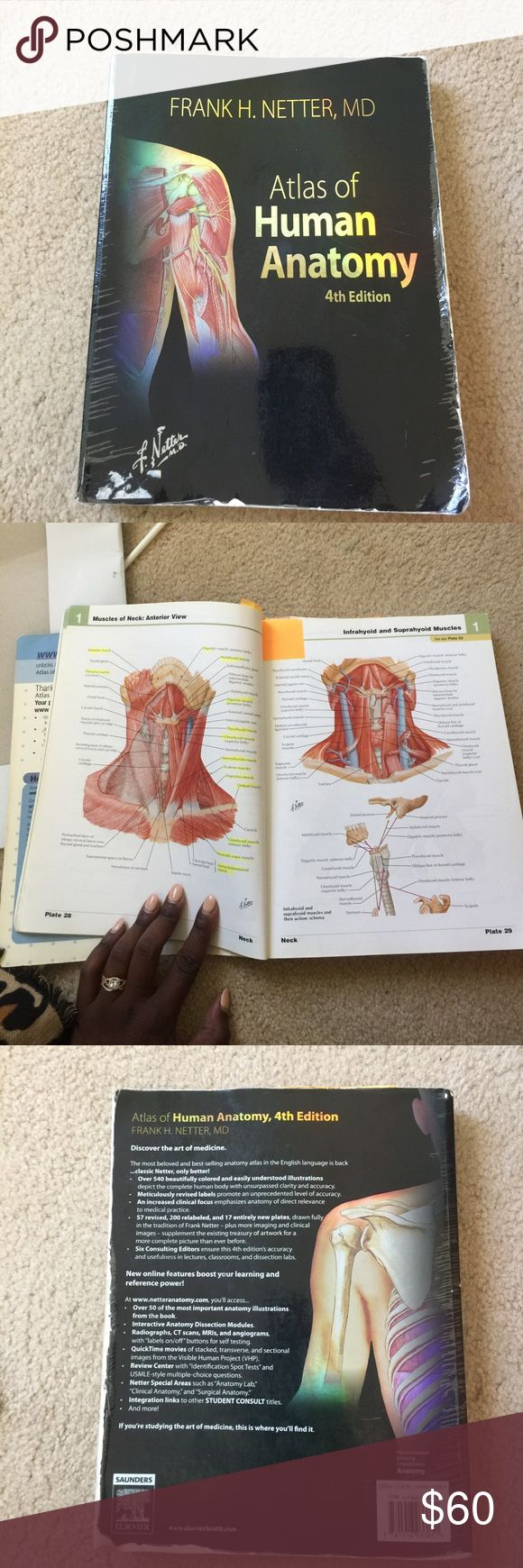 Fundamentals Of Anatomy And Physiology By Martini Complete set ...