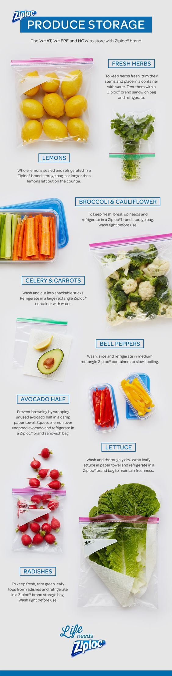 10 best a fruit n veggie storage images on pinterest fruits and to bag or not to bag produce storage with ziploc brand workwithnaturefo