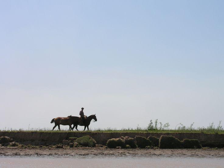 """Turismo Rural en Mar del Plata:""""Una opción para quienes desean distanciarse del ruido de la ciudad"""""""
