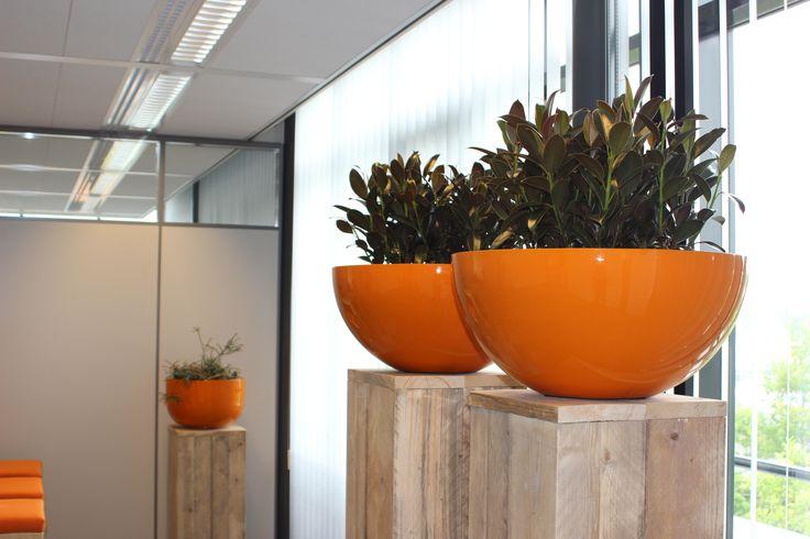 groenstyling kantoorpand