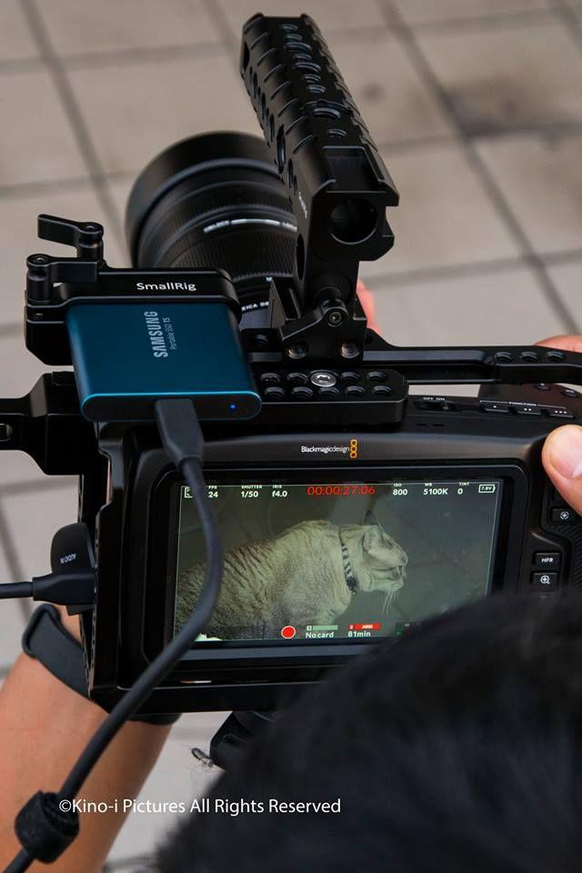 Smallrig Cage For Blackmagic Design Pocket Cinema Camera 4k 2203 Is A Dedicated And Formfitting Cage Cinema Camera Blackmagic Cinema Camera Blackmagic Design