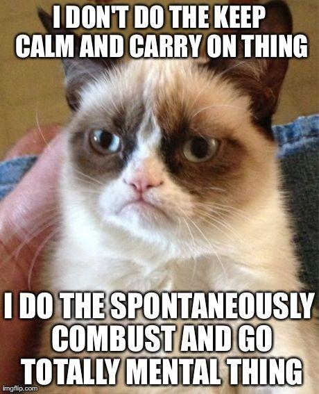 Grumpy Cat explains it all.