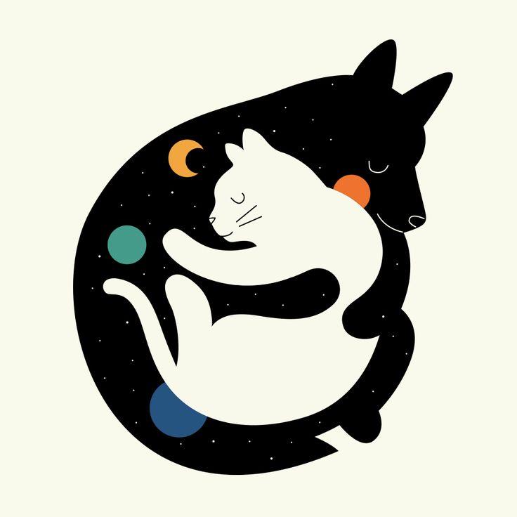 Viernes de Gatos