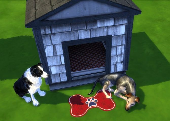 Sims  Cats And Dogs Sell Animals