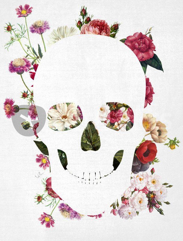 лучшие череп из цветов постер считается