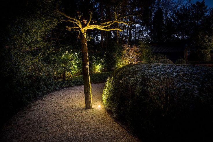 boomverlichting tuin verlichting tuin bij nacht spot