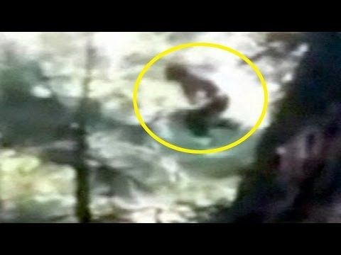 Fisherman Sees Two Bigfoots Beside River [Real Bigfoot Encounters] -  at 2:48 a strange description of a cacoon- like shape - could be a baby bigfoot, or food, what did bigfoot wrap up!!