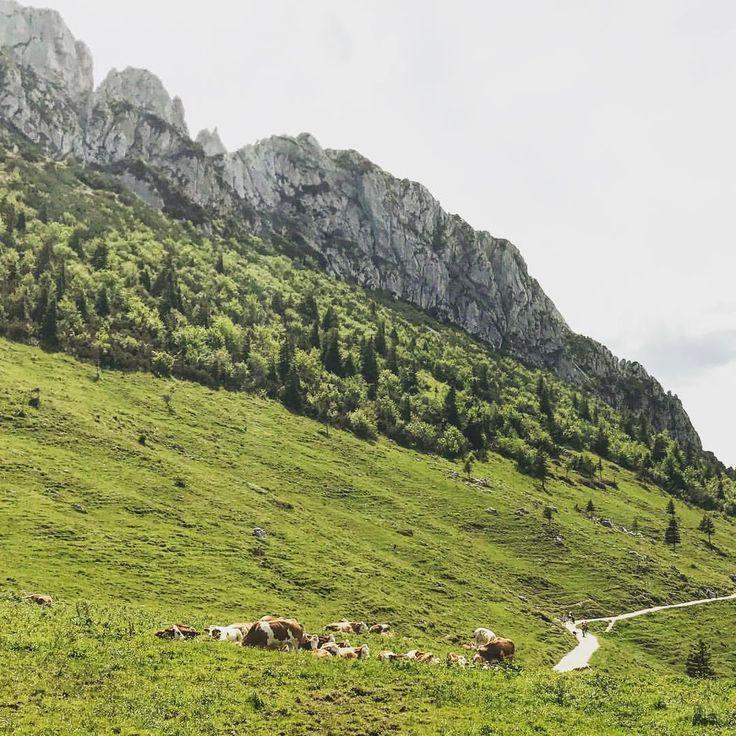 "Gefällt 949 Mal, 2 Kommentare - naninka rösler (@naninkastravelspots) auf Instagram: ""Kampenwand #Kampenwand #gebirge #berge #mountains #alpen #alps #bergsteigen #bergsüchtig #alm…"""