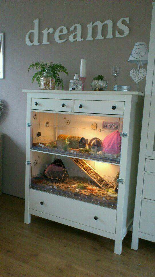 I'd do this (not with Guinea pigs, haha) but only take out that first top large drawer & leave the lower large drawer in place. That way I'd have concealed storage with one open shelf.                                                                                                                                                                                 More