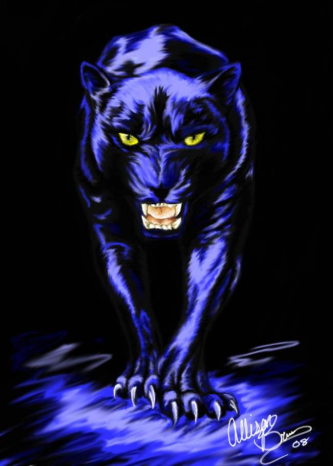 Black panther by alliekattus on deviantart cool animals for Carolina panthers tattoos