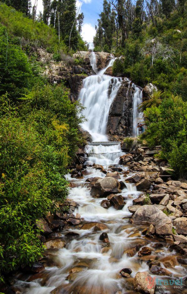 Steavenson Falls, one of Victoria's highest waterfalls