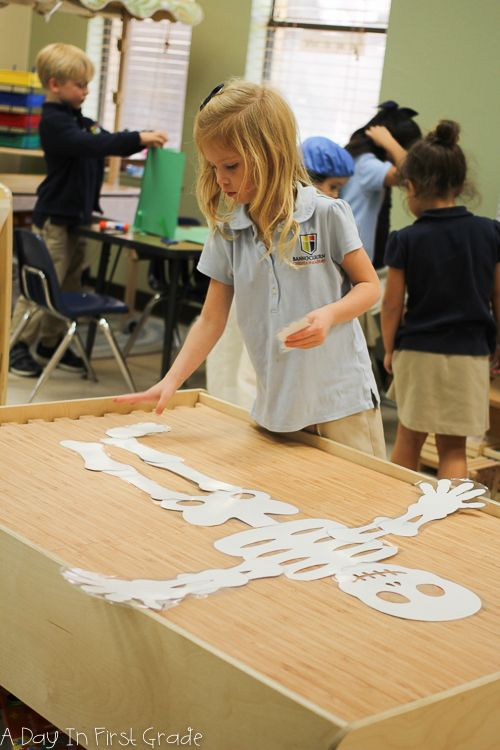 engaging skeleton activities to use with kindergarteners
