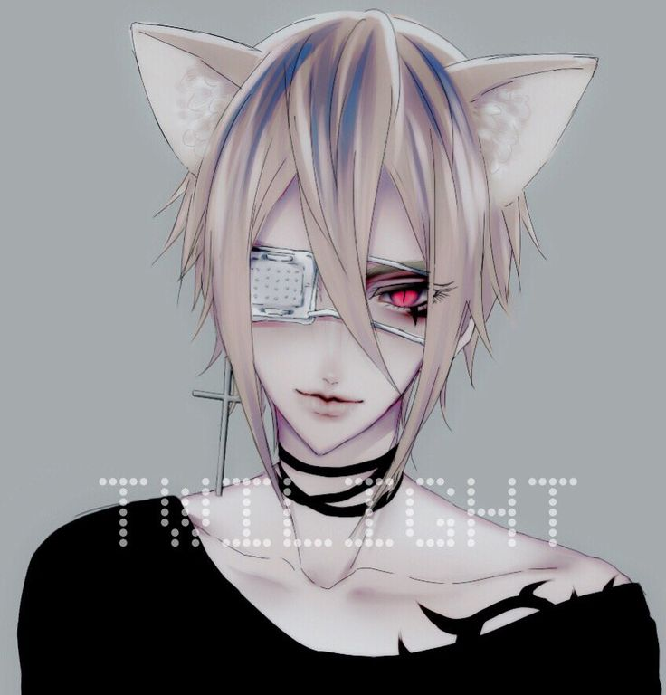 anime neko boy
