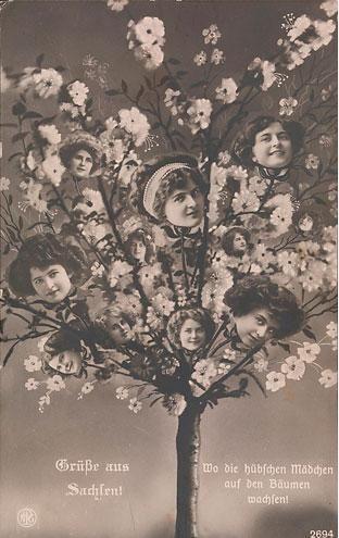 Artista desconocido, Grüße aus Sachsen! Wo die hübschen Mädchen auf den Bäumen wachsen! Editorial: Neue Photographische Gesellschaft, ca. 1910, el Fondo de fotografía del siglo XX.