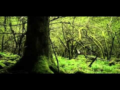 Pohádka O Červené Karkulce CZ pohádky bratří Grimmů - YouTube