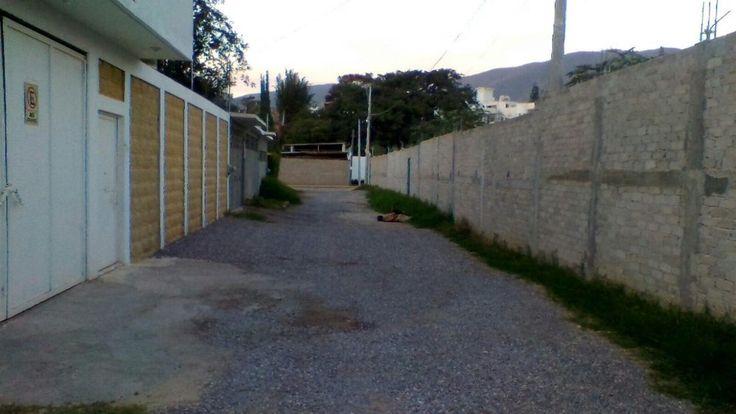 Dejan dos hombres torturados y sin vida en Chilpancingo