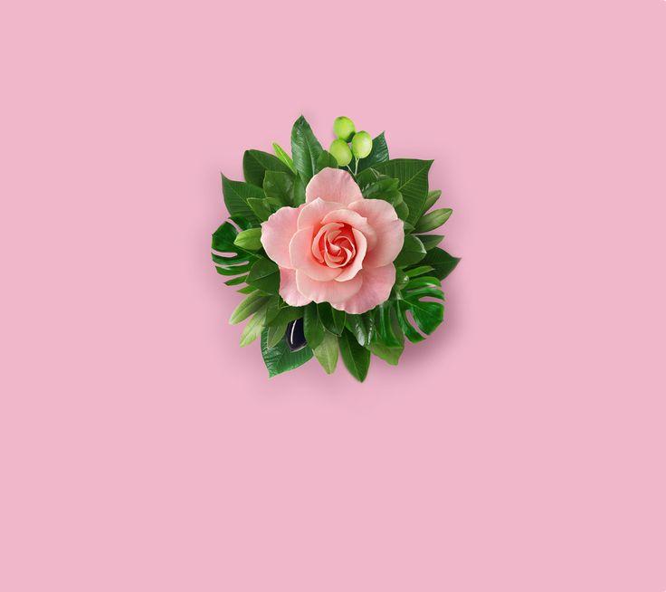 EMUI8.0 for Huawei Mate10 デフォルト壁紙ダウンロード #pink #flower #wallpaper #ファーウェイマイト10 #壁紙 #ダウンロード