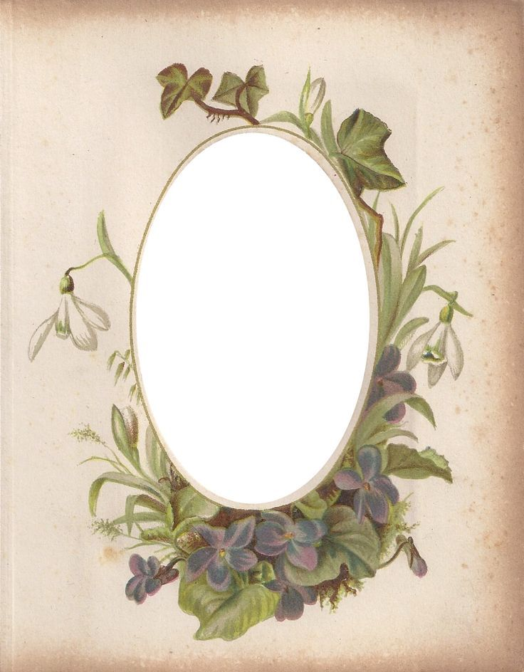 Victorian Photo Album Oval Floral Frame ~ Zibi Vintage Scrap: