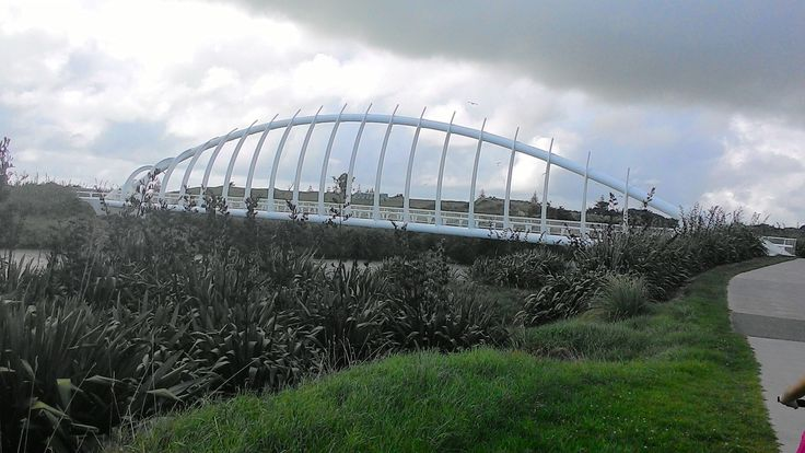 Te Rewa Rewa Bridge The 83m long Te Rewa Rewa bridge is reminiscent of a breaking wave or a whale skeleton. It was designed and built by a consortium led by local company Whitaker Civil Engineering Limited and included Novare Design, CPG and Fitzroy Engineering. http://www.newplymouthnz.com/OurDistrict/Attractions/CoastalWalkway.htm