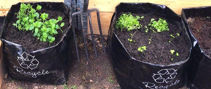 Bokashi kjøkkenkompostering gir mindre utslipp av drivhusgasser og mindre svinn enn tradisjonell kompostering av matavfall.
