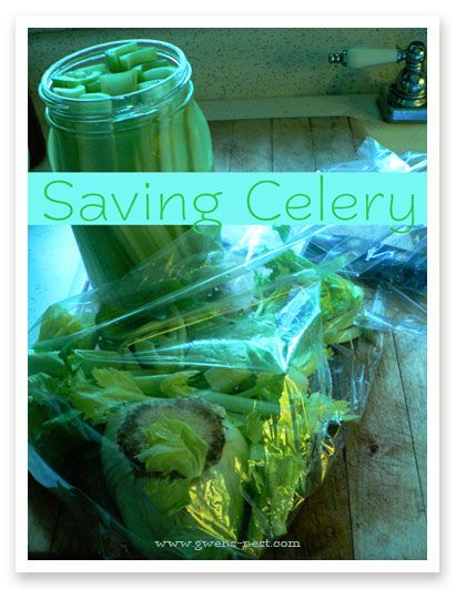 Today's kitchen tip: saving celery.   Even wondered how to keep it nice and crisp in the fridge after cutting it into sticks?  It's SUPER easy.  Simply drop all of your celery sticks into a glass jar, and fill with clean fresh water.  It keeps them super cold & crisp.