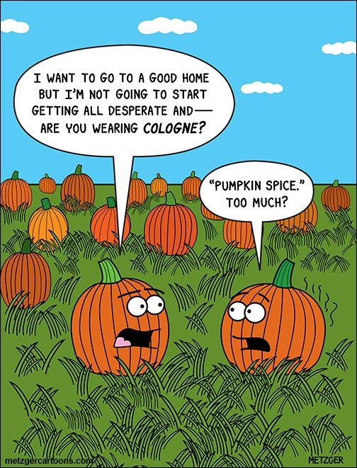 If you like pumpkin spice, this joke will make you laugh.