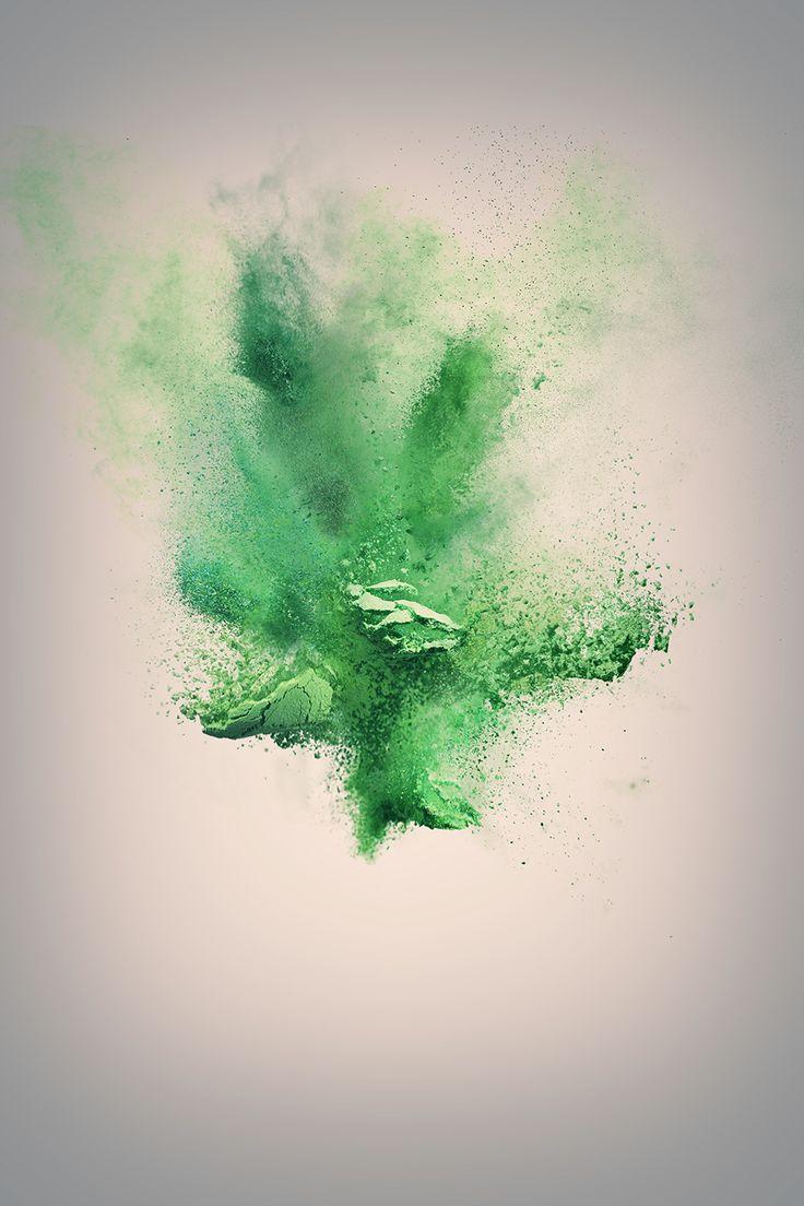 773 besten green bilder auf pinterest pflanzen botanik for Green pflanzen