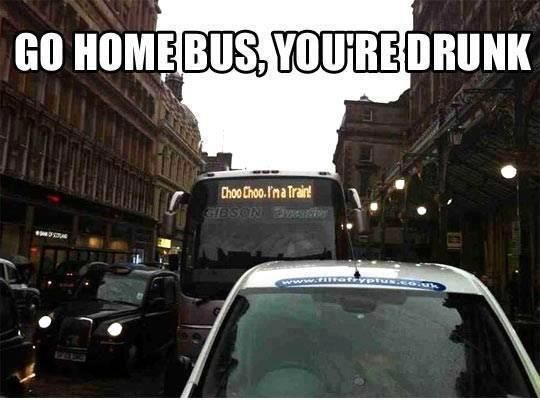 56 Best Buses Images On Pinterest: Go Home Bus, You're Drunk