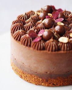 Nougatchokolademoussekage med saftig nøddebund